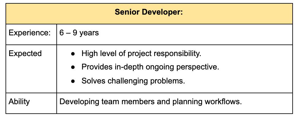 senior-level-developer