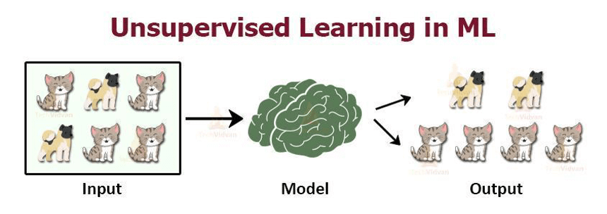 unsupervised learning in machine learning